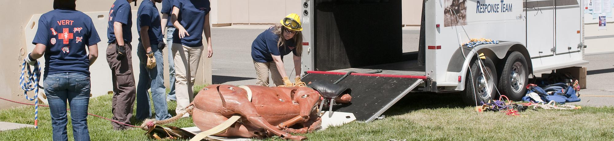 The UCD Veterinary Emergency Response Team (VERT) starts their large animal rescue demonstration at the UC Davis 2009 Picnic Day celebration, using a plastic horse model to simulate a horse trapped in a horse trailer. The team specializes in large animal rescue. The demonstration was held at the William R. Pritchard Veterinary Medical Teaching Hospital at the University of California Davis School of Veterinary Medicine.